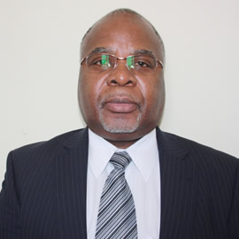 Executive Chairman- Dr P.L.N Sikosana.